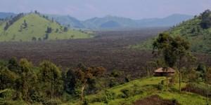 Une forêt en partie brûlée près de Mweso, en RDC. © Melanie Gouby/AP/SIPA